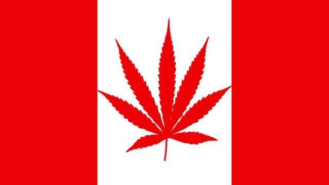 Ô Cannabis